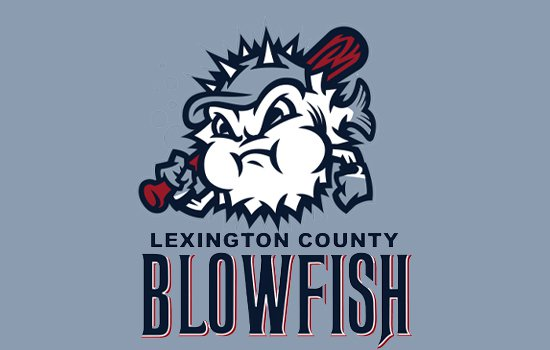 BLOWFISH BASEBALL